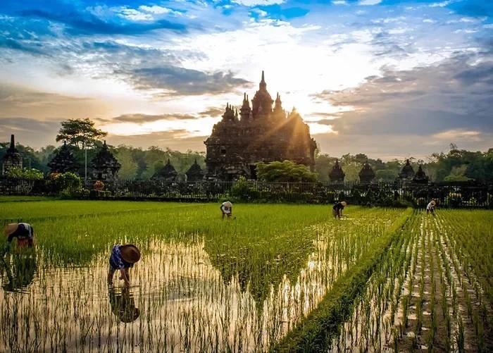 Восход над храмом Плаозан( Индонезия) Восход, Фотография, Храм, Индонезия