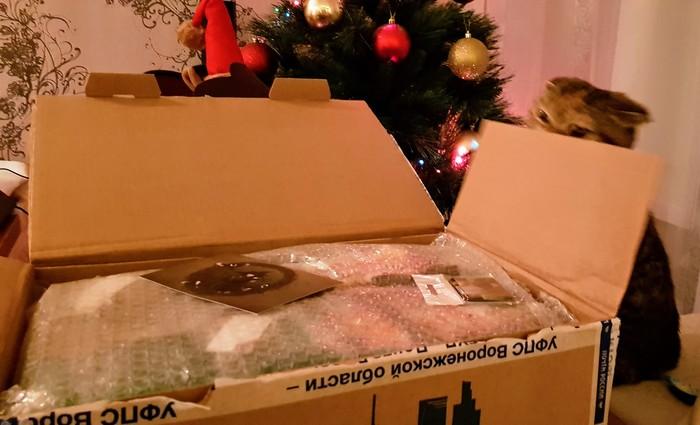 АДМ Воронеж - Пенза Отчет по обмену подарками, Обмен подарками, Тайный Санта, Новогодний обмен подарками, Длиннопост, Кот