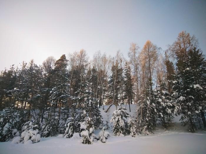 Енисей зимой Зима, Енисей, Деревья в снегу, Redmi Note 4x, Vsco, Длиннопост