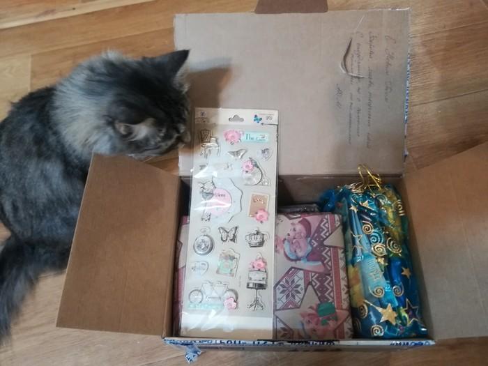 Орел-Владимир, лучший сюрприз Новогоднее чудо, Обмен подарками, Длиннопост, Тайный Санта, Отчет по обмену подарками, Кот