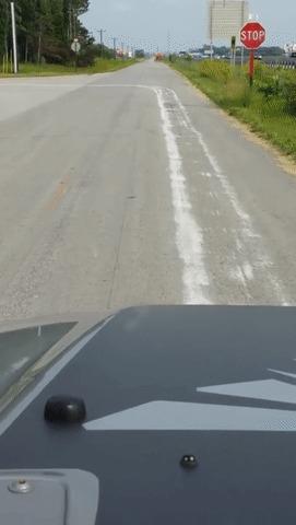 Белая дорожка