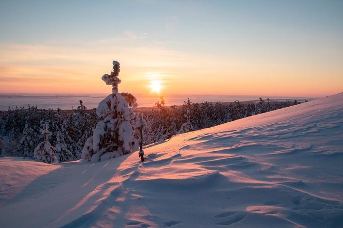 Зимний лес с видом на Волгу Фотография, Природа, Зима, Россия, Лес, Длиннопост