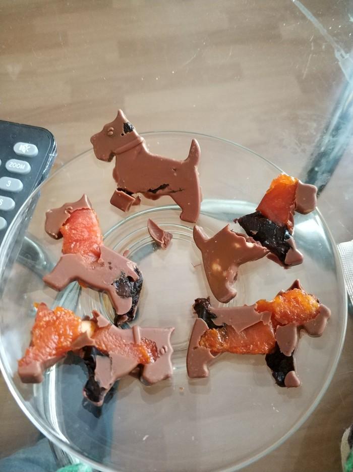 Собаки из Resident Evil Resident Evil, Собака, Зомби, Шоколад