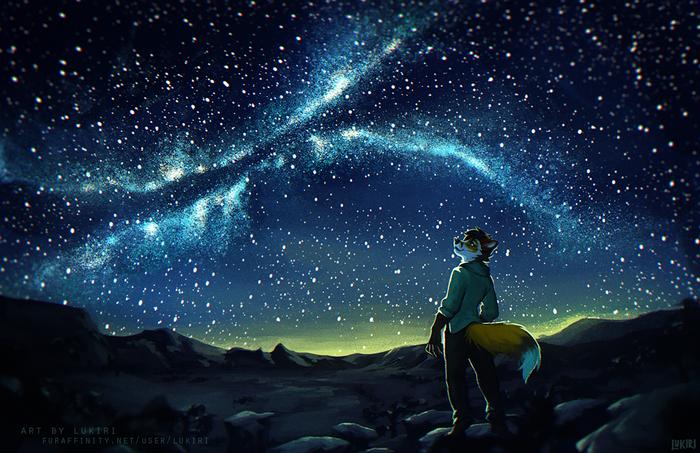 Desert Nights Фурри, Арт, Антро, Furry Fox, Пустыня, Звездное небо, Lukiri
