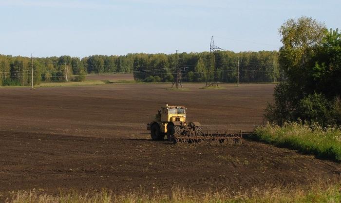 От ростка до вашего стола Зерно, Уборка, Хлеб, Сельское хозяйство, Механизаторы, Длиннопост