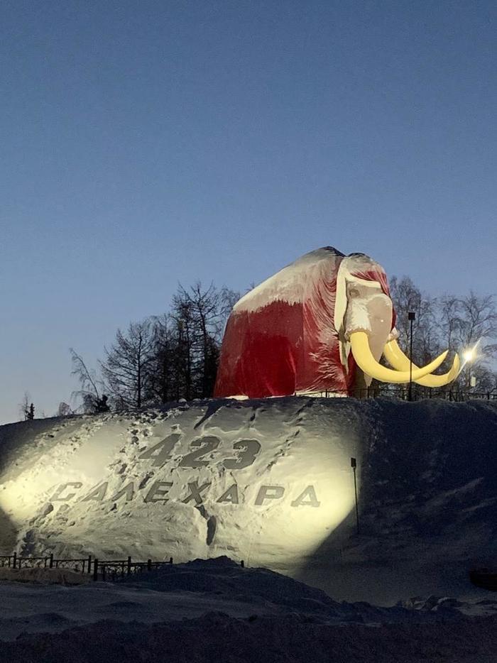 Новогодний Салехардский мамонт !)