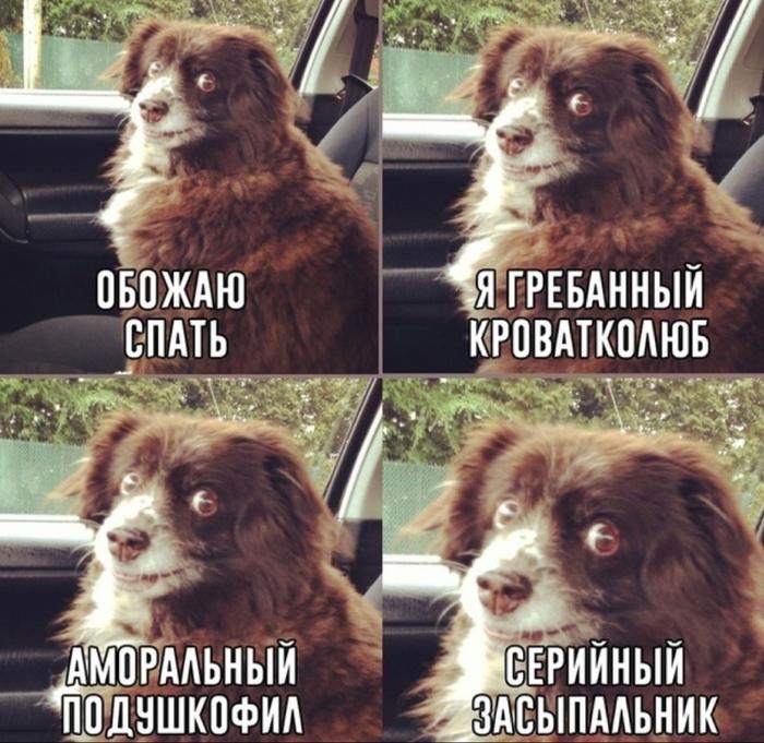 Прям про меня)))