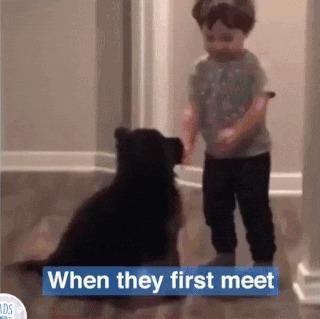 Начало большой дружбы