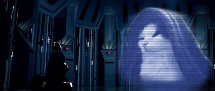 Когда твой кот владыка ситх... Кот, Император Палпатин, Фотошоп мастер