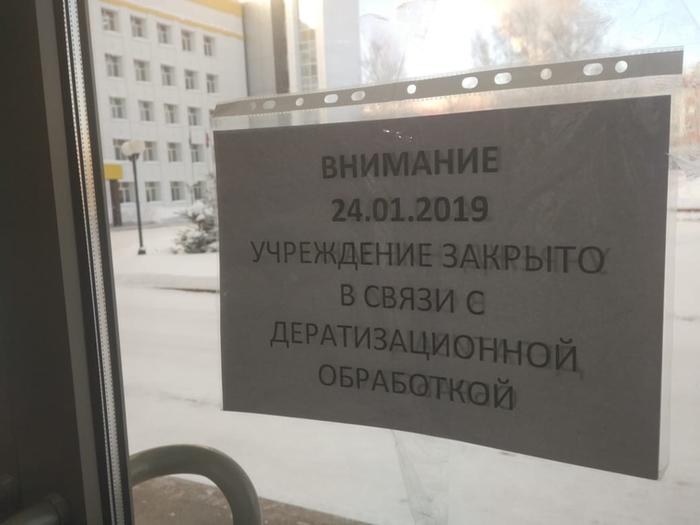 После задержания мэра Нефтеюганска горадминистрацию закрыли для борьбы с крысами Новости, Россия, Нефтеюганск, Мэр, ФСБ, Коррупция, Негатив