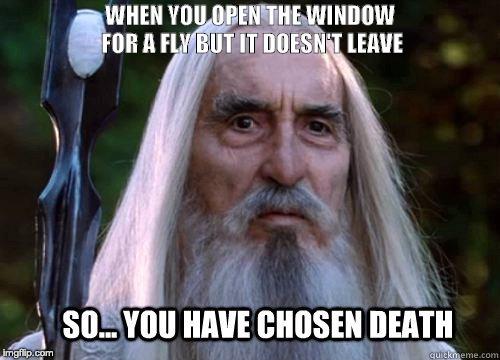 Когда ты открыл окно для мухи, но она не улетает Муха, Саруман, Властелин колец, Смерть, Картинка с текстом, Reddit