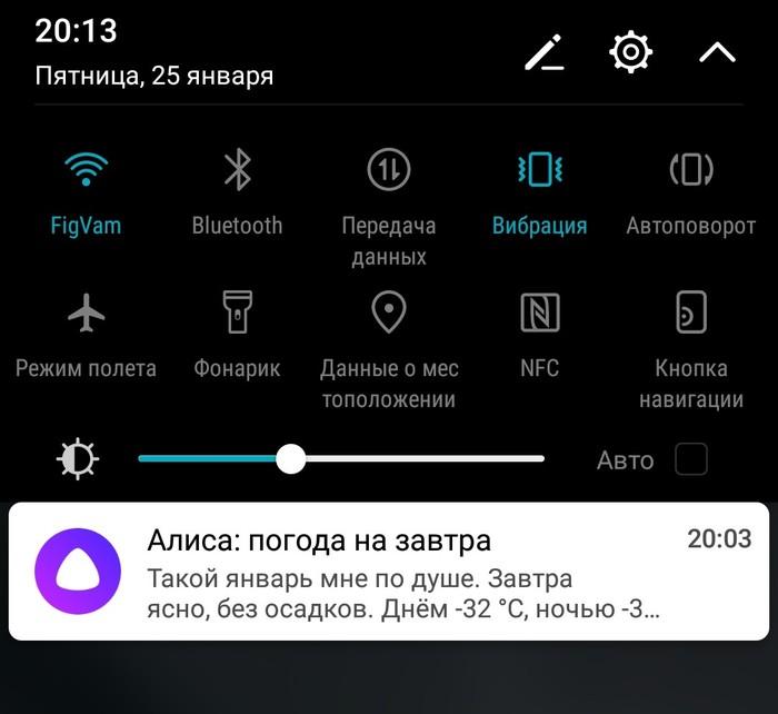 Алиса, это сарказм? Холодно, Скриншот, Яндекс Алиса