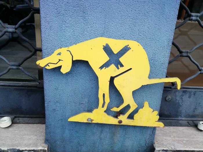 """Креативное """"выгул собак запрещён"""". Собака, Дизайн, Прогулка по городу, Найди"""