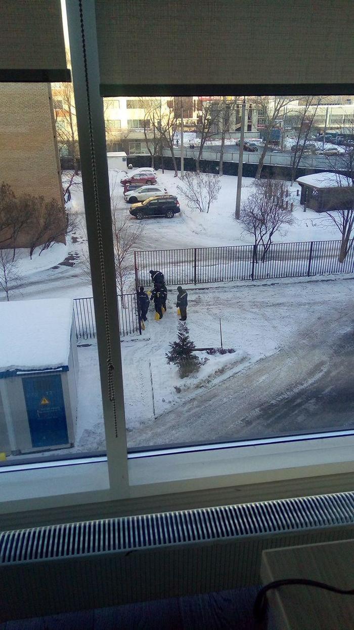 Особенности национальной уборки снега Уборка снега, Работа, Симуляция