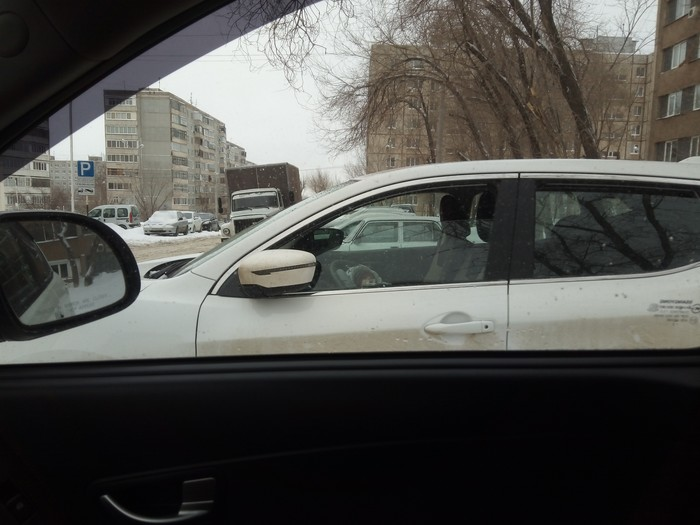 Охранник Охрана, Авто, Окно, Дети