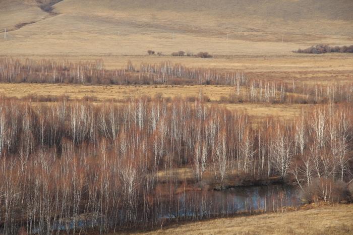 Хакасия осенью Хакасия, Осень, Лес, Фотография