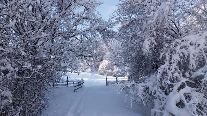 Зимние Карпаты Украина, Горы, Карпаты, Зима, Фотография, Длиннопост