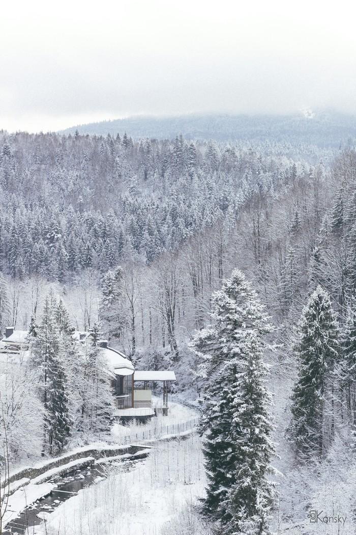 Карпаты в белых тонах Карпаты, Зима, Елки, Лес, Река, Горная река, Фотография, Пейзаж