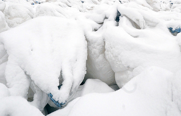 Уволена чиновница, заставившая учителей школы в Саратове убирать снег в мешки. Саратов, Чиновники, Власть