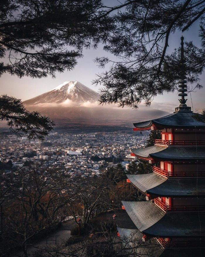 Столкновение традиционной и современной японской культуры Фотография, Искусство, Япония, Красивый вид, Красивые места, Контраст, Современность, Мегаполис, Длиннопост