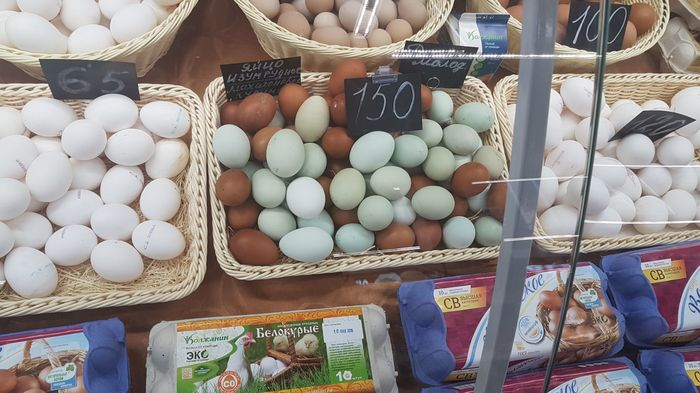 Зеленые яйца Яйца, Несушки, Продукты, Познавательно, Порода, Это познавательно, Наука, Факты, Длиннопост
