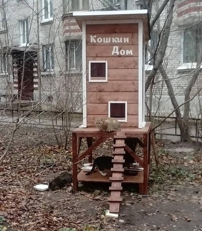 Кошкин Дом . Кошкин дом, Доброта, Длиннопост, Кот