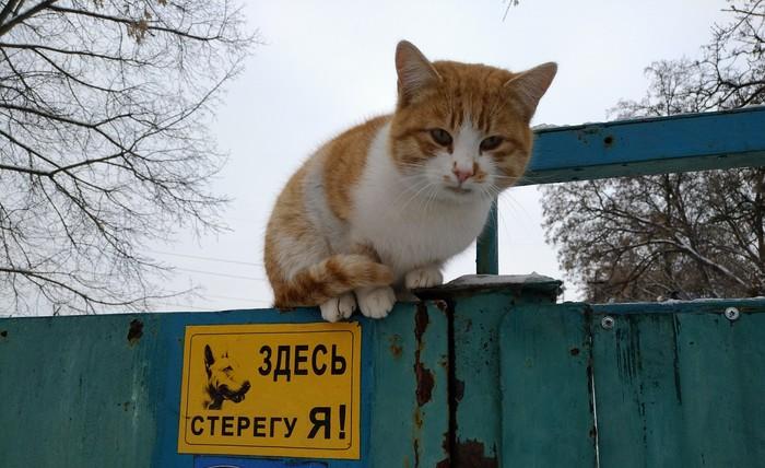 Охранник