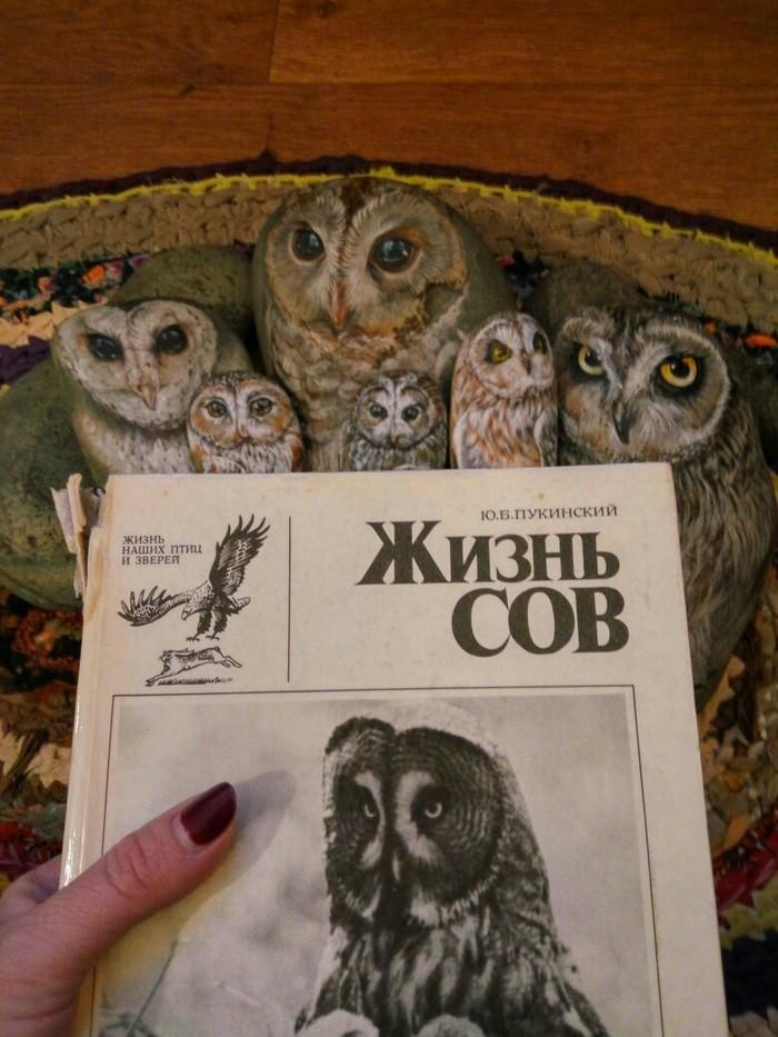 Мои каменные совы Сова, Роспись по камню, Горы, Живопись, Горный Алтай, Длиннопост, Птицы, Роспись, Акрил
