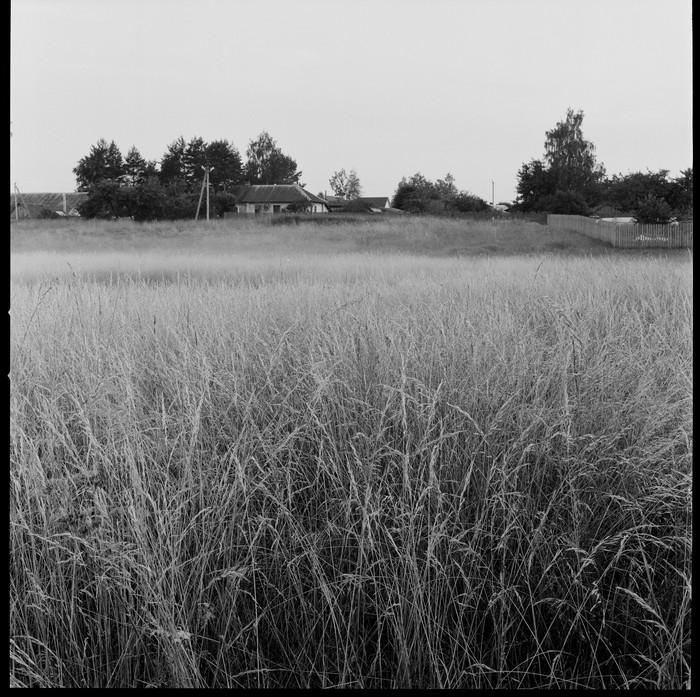 Немного лета и не только Фотография, Зонная система, Фотопленка, Фильмы, Текст, Черно-Белое фото