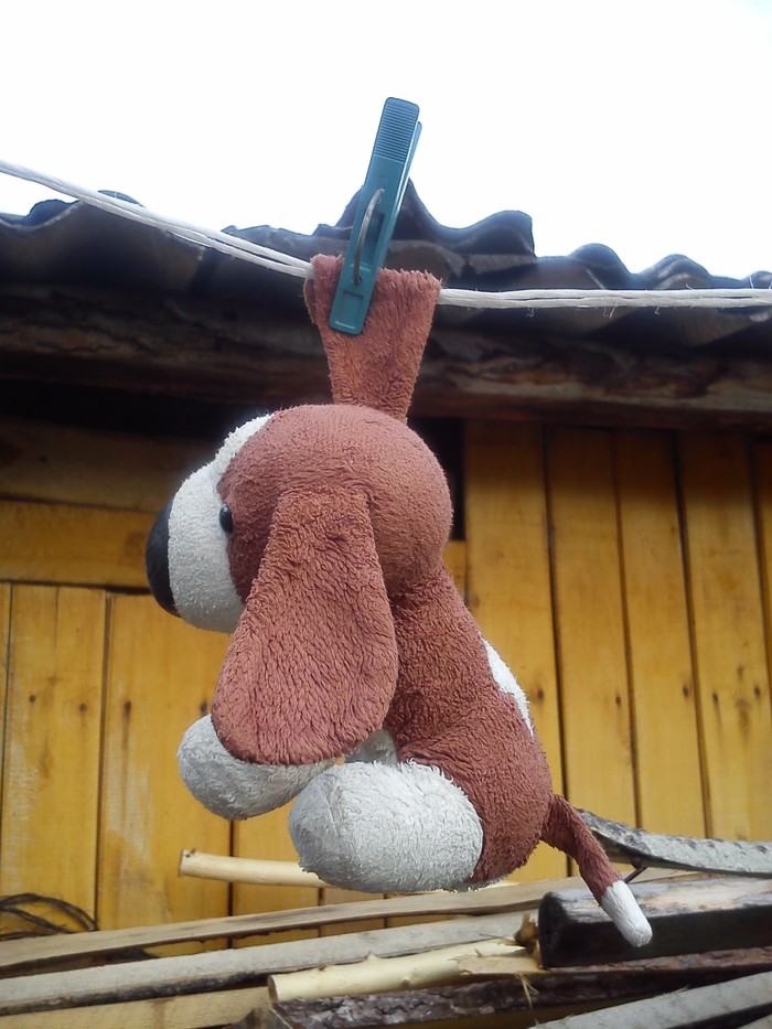Помогите найти игрушку! Мягкая игрушка, Дети, Помощь, Помогите найти, Сила Пикабу, Длиннопост, Без рейтинга