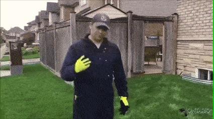 Что скрывает трава