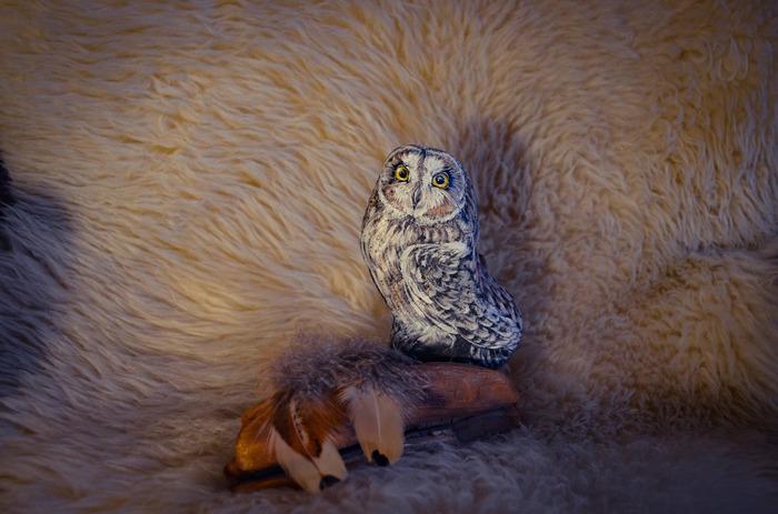 Мои каменные совы #4 Сова, Роспись по камню, Акрил, Птицы, Горный Алтай, Роспись, Болотная сова