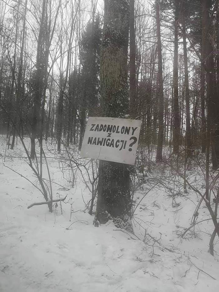 В тёмно-синем лесу... :) Навигатор, Лес, Заблудился, Польша