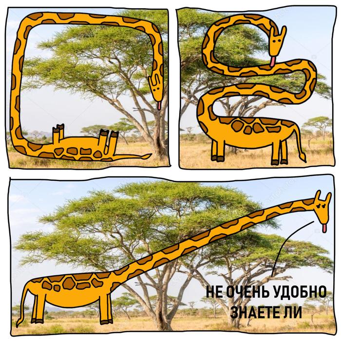 Вот почему про жирафов нет комиксов