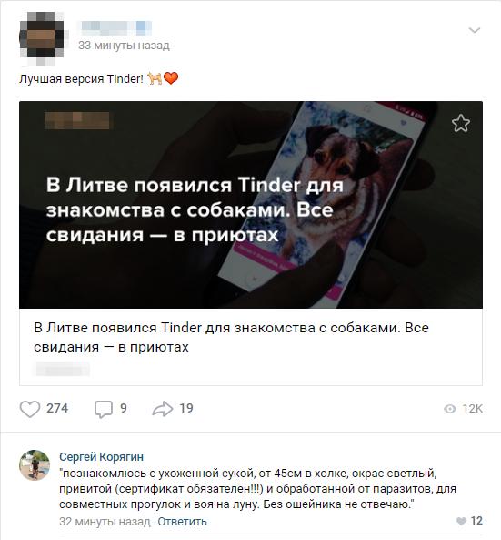 Tinder для собак Вконтакте, Комментарии, Tinder, Собака, Знакомства, Приют для животных, Новости, Приложение