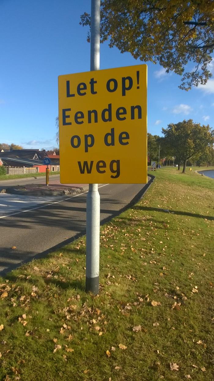Осторожно! Дорогу переходят лебеди Животные, Птицы, Лебеди, Нидерланды, Голландия, Длиннопост