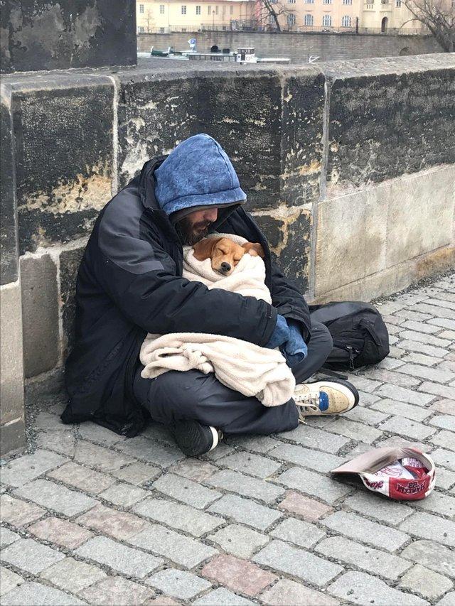 Бездомный сидит на мосту в Праге. На улице -4 и он использует свое единственное одеяло, чтобы укутать собаку. Настоящая любовь.