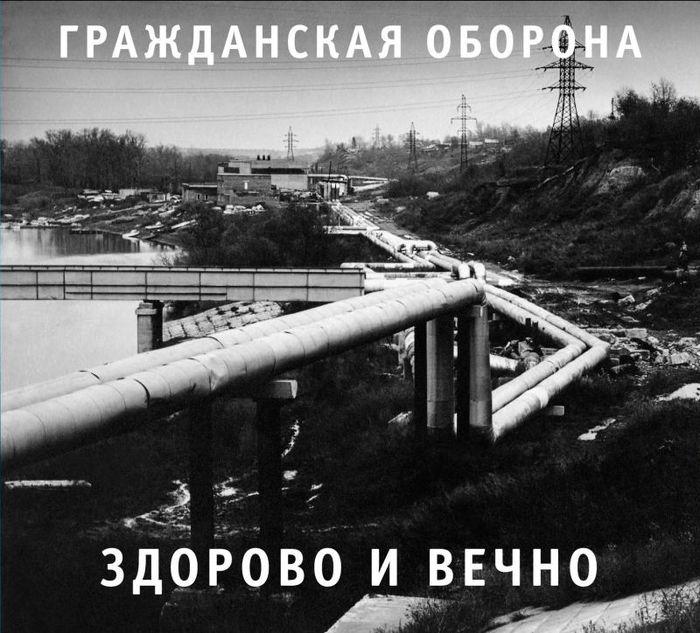 Здорово и Вечно Егор Летов, Омск, История, Длиннопост