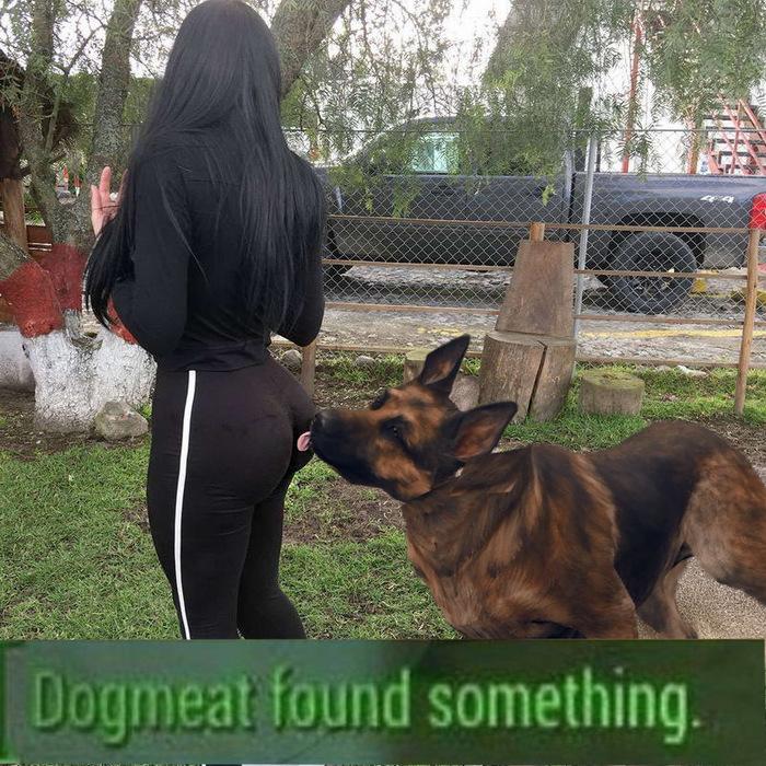 Догмет что-то нашёл.