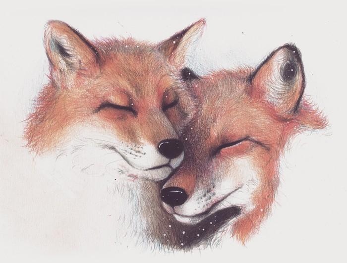 Лисицы Цветные карандаши, Рисунок, Лиса, Животные, Традиционный арт, Скетчбук, Анималистика