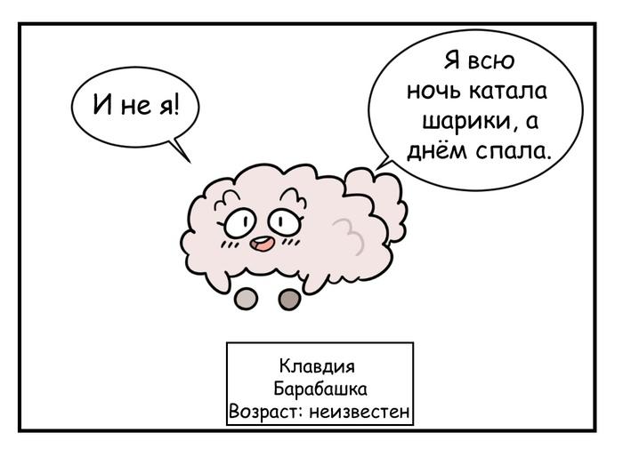 https://cs11.pikabu.ru/post_img/2019/02/11/5/154987006015117386.jpg