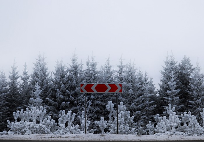Жизнь это выбор. Фотография, Зимний лес, Зима