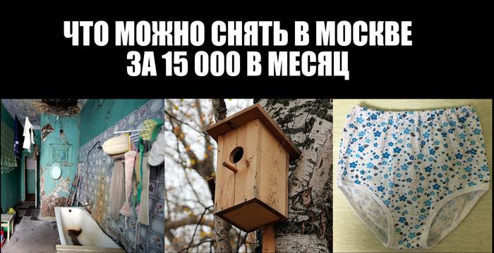 Мошенничество при аренде жилья в Москве Жилье, Мошенничество, Москва, Аренда жилья, Длиннопост