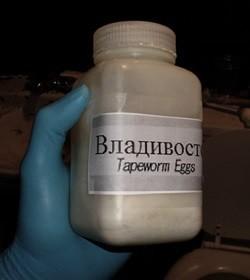 таблетки для похудения яйца ленточных червей