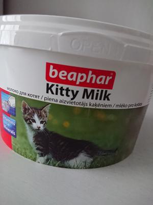 Отдам молоко для котят Отдам, Котята, Москва