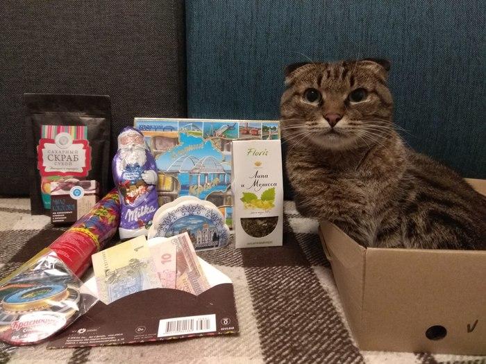 Дед Мороз-альтруист из Краснодара Кот, Обмен подарками, Тайный Санта, Отчет по обмену подарками