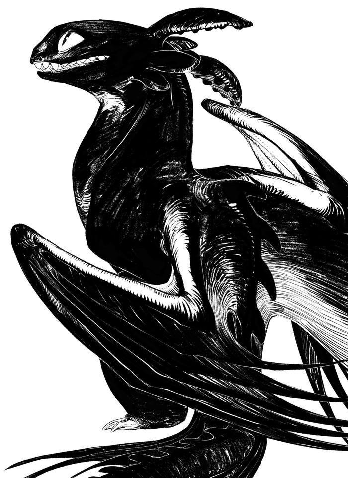 Беззубик Арт, Мультфильмы, Как приручить дракона, Беззубик, Дракон, Черно-Белое, Подборка, Длиннопост