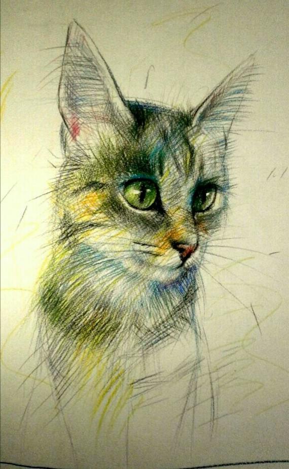 Котик Кот, Рисунок, Графика, Животные, Анималистика