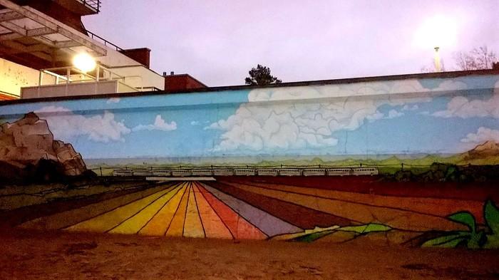 Граффити (так же как и стрит-арт) должны украшать стены, а не уродовать их #88 Уличная живопись, Граффити, Стрит-Арт, Поезд, Сестрорецк, Фотография
