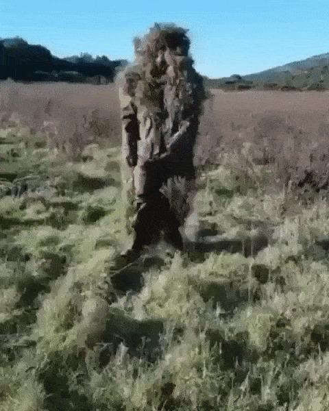 Прыгающий куст